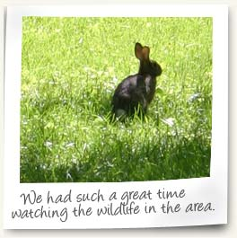 We had such a great time watching the wildlife in the area.